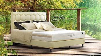 tempat tidur spring bed Airland Chiropedic Qi